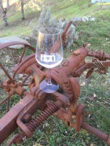 Bicchiere Vini di Vignaioli 2