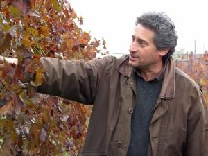 Az. Agr. Luciano Saetti