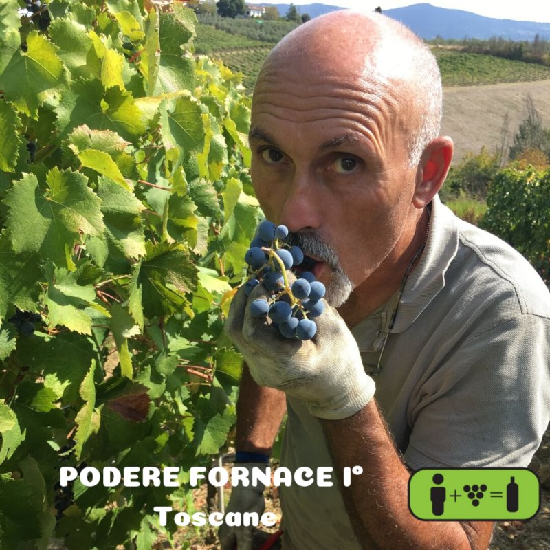 Podere Fornace 1