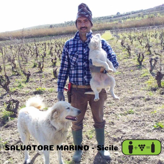 Salvatore Marino