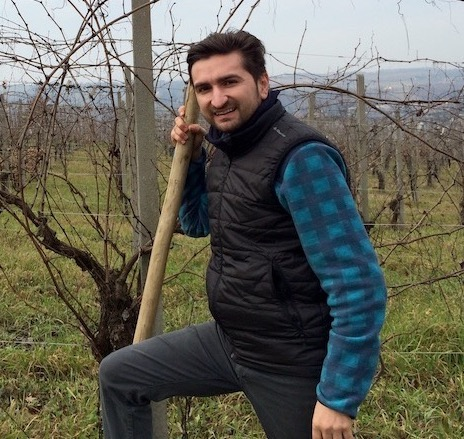 Croci tenuta vitivinicola