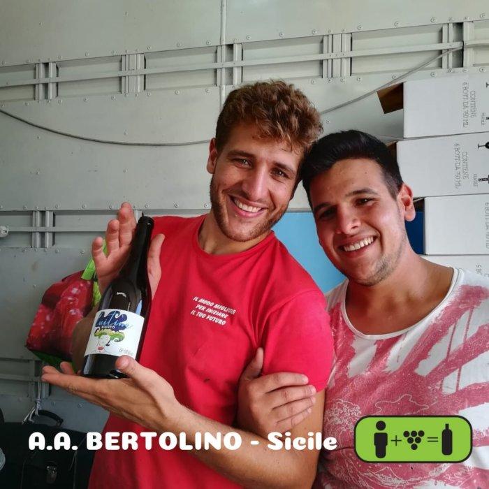 Bertolino